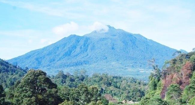 Gunung Talamau (net)