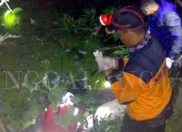 Relawan PMI, Tagana dan warga sedang mengevakuasi jasad korban dari dasar Ngarai Sianok. (dok PMI)