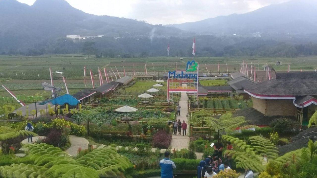 Pujon Kidul Desa Wisata Beromzet Miliaran Portal Berita Singgalang